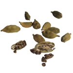 Cardamom (Essential Oil)